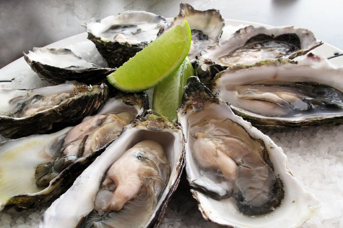 1024px-Pacific_oysters